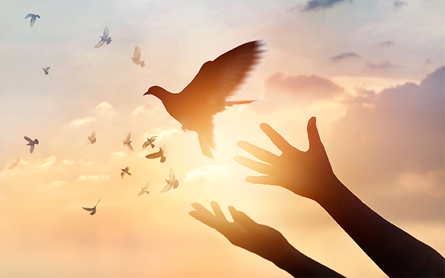 Letting go: Forgiveness is the First Key to Creating a New You